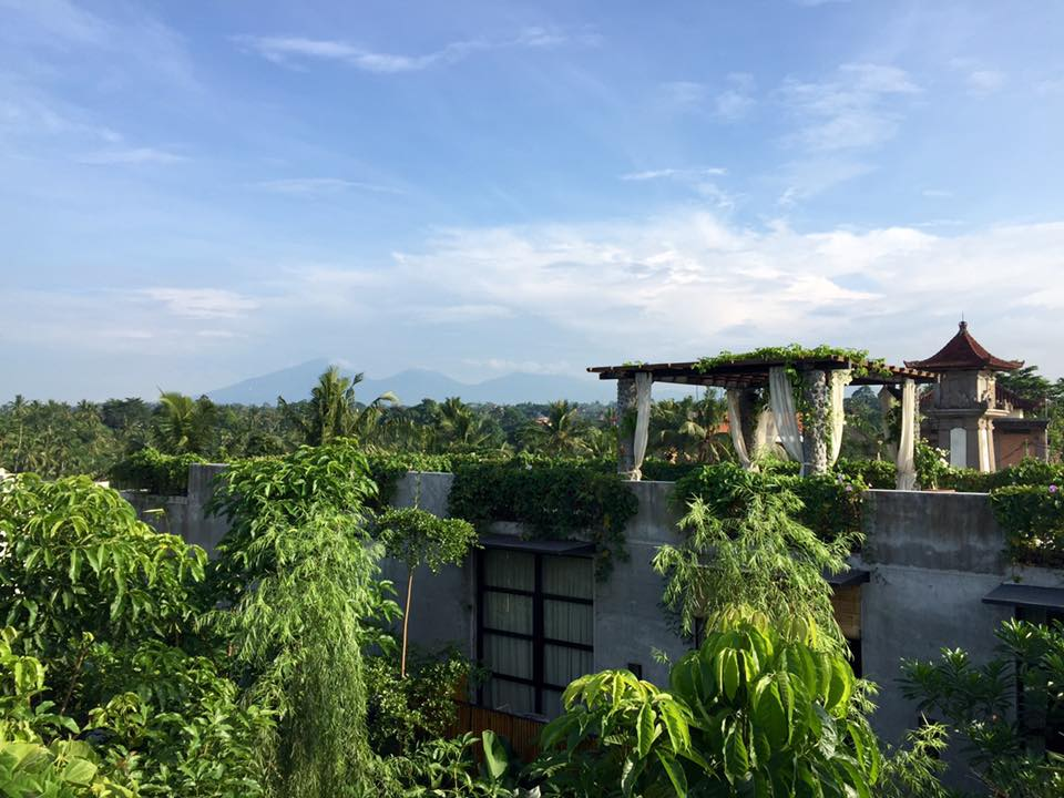 Bisma 8 hotel view Ubud