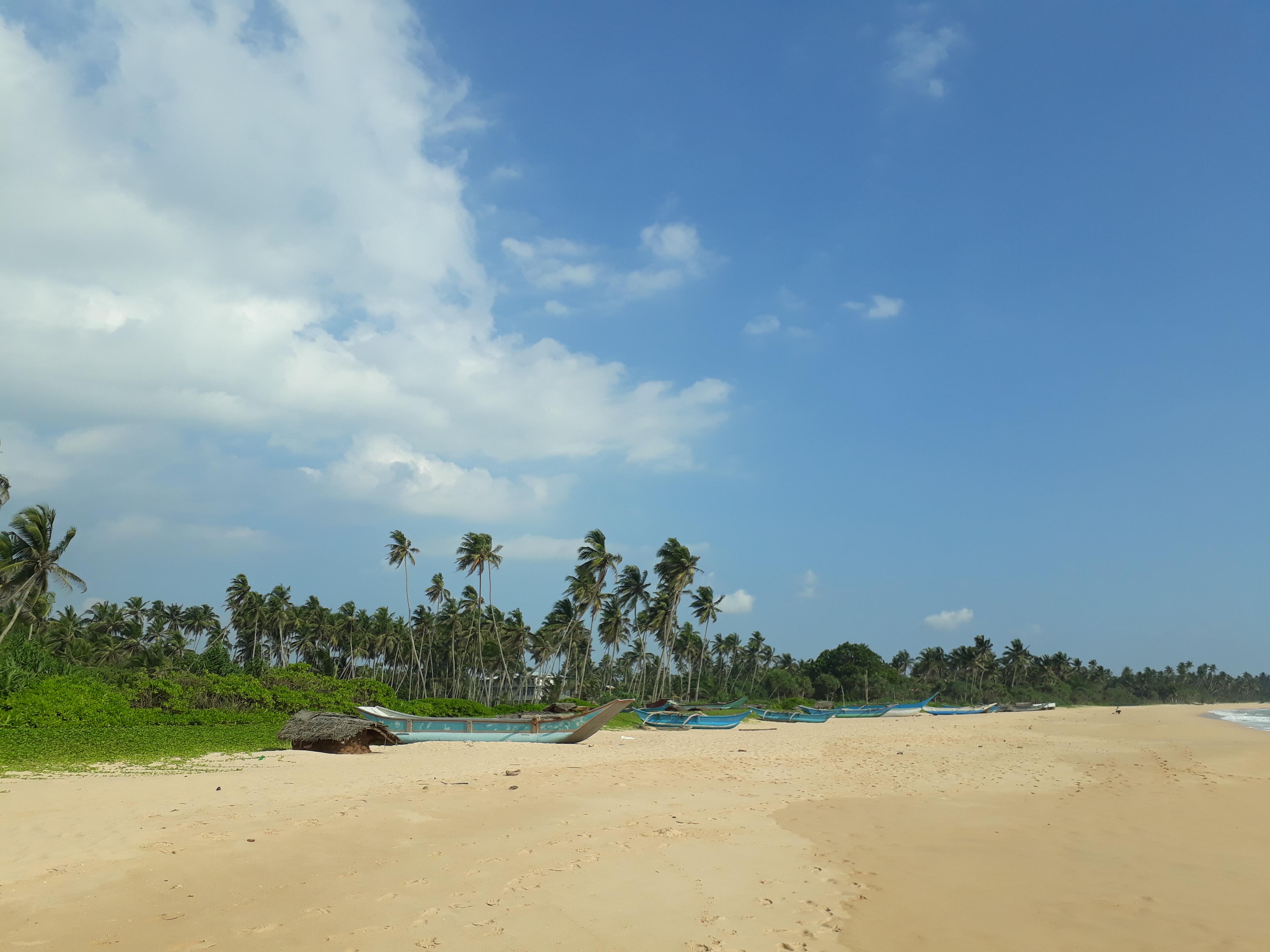 Srilanka - Ahungalla 2017